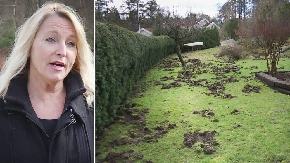Annki Ljungdahl, är en av de vildsvinsdrabbade villaägarna