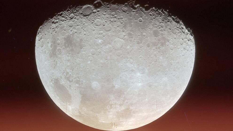 Första varvet runt månen gjordes med Apollo 8 ett halvår före landstigningen.