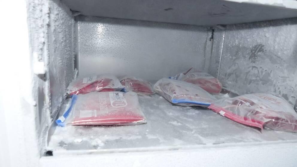 Bilder på plasmapåsar, mediciner och annat material som polisen misstänker att Mark Schmidt har använt i samband med dopningverksamheten.