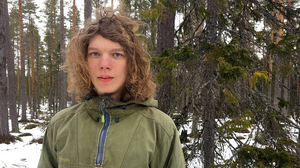 Bild på Eino Kenttä som var med och stoppade skogsavverkningen, skog i bakgrunden.
