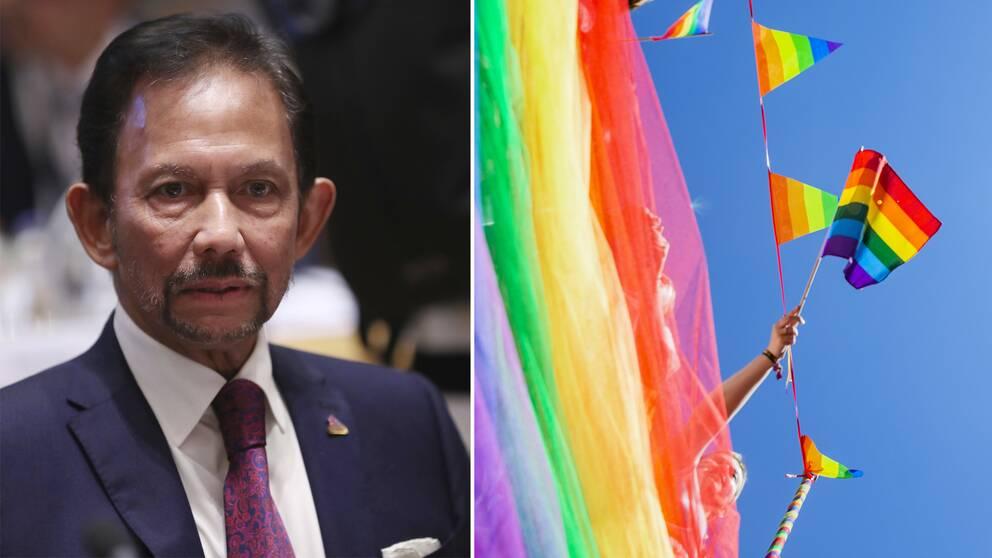 Hassanal Bolkiah och prideflaggor.