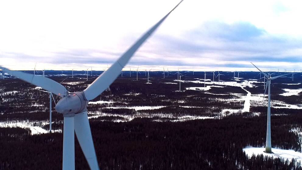 Vindkraftsverkspark utanför Piteå.
