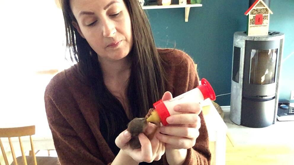 Therese Öjebro matar den upphittade ekorrunge som hon räddade med en nappflaska.
