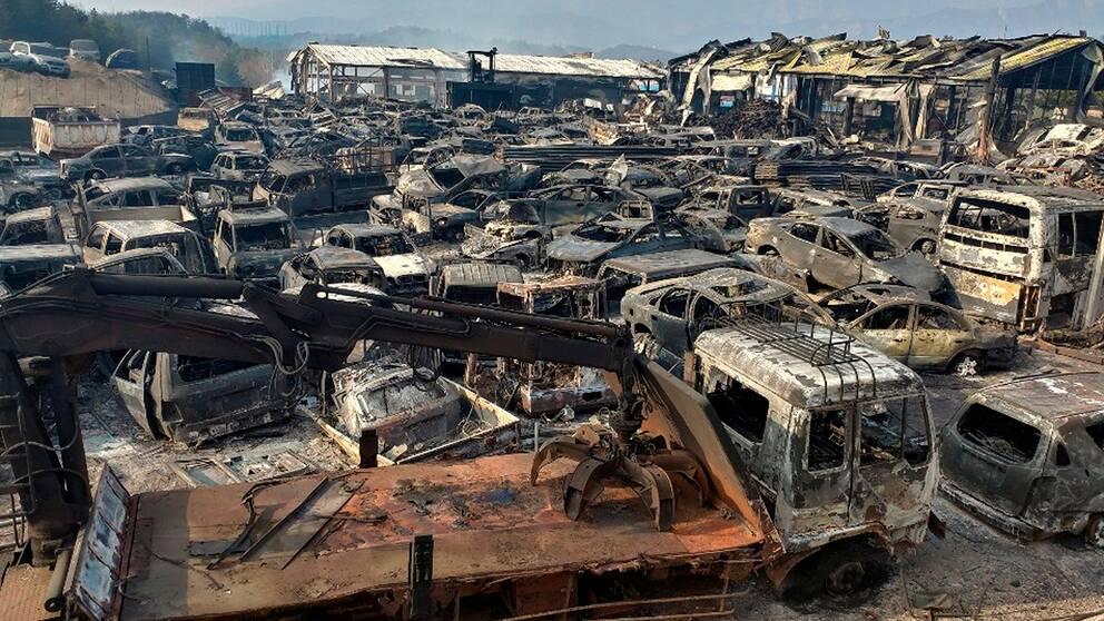 Sönderbrända bilar i Sokcho, Sydkorea.