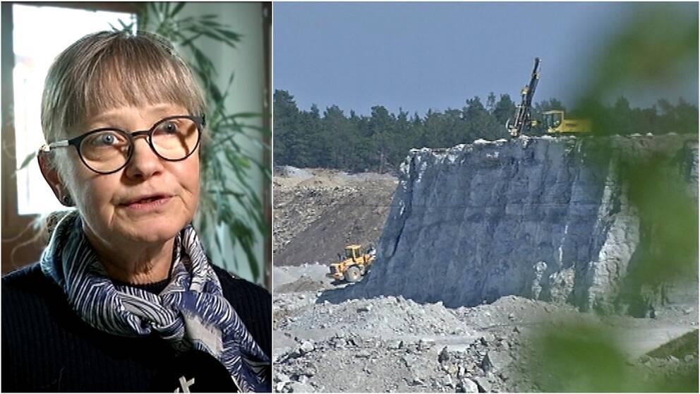 Anna-Lena Fritz, enhetschef på länsstyrelsen på Gotland.