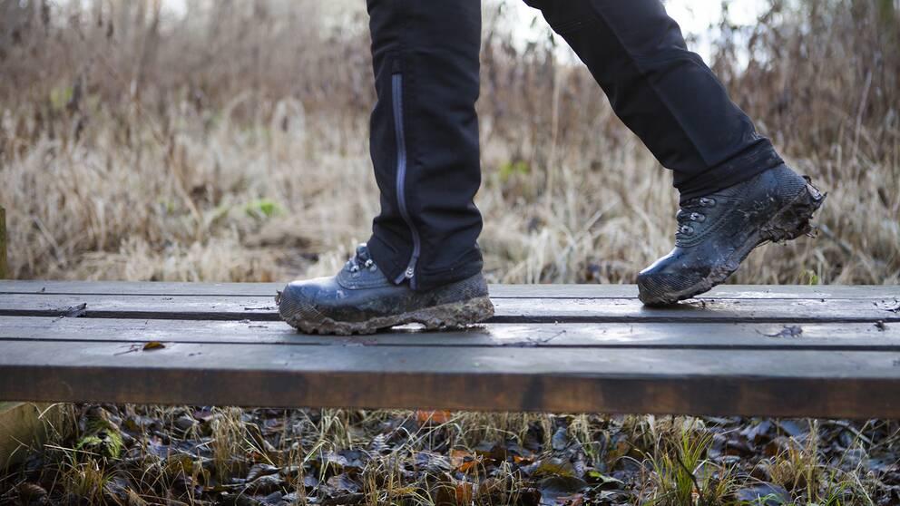 nära bild på benen av en person som går i kängor på en träspång, blöta höstlöv på marken
