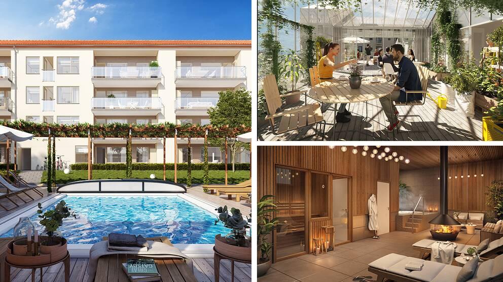 Tre bilder från byggföretag på hur nybyggda bostäder ska se ut. Hus med pool, takterrass och spa.