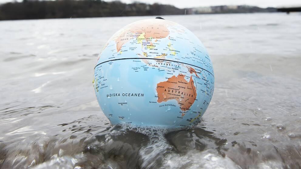 Klimat/miljö viktigaste frågan inför EU-valet