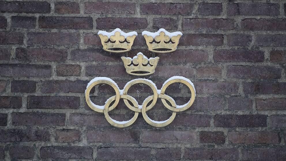 Regeringen ger klartecken för OS-ansökan
