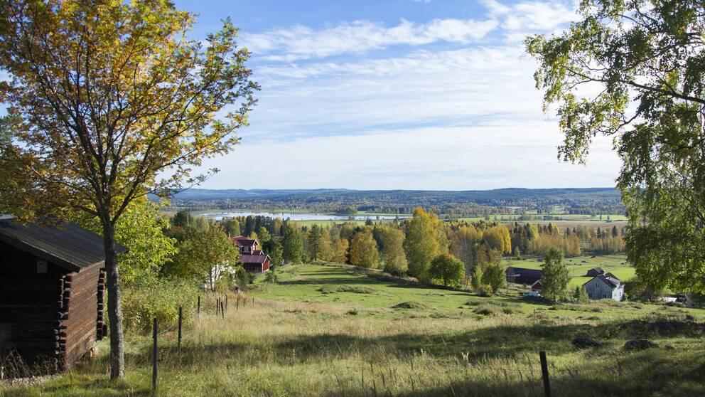 Landskapsfoto på sommartid. I förgrunden syns två träd och en träbyggnad. Bortom dessa finns ett fält, flera byggnader, skog och en vattenansamling.