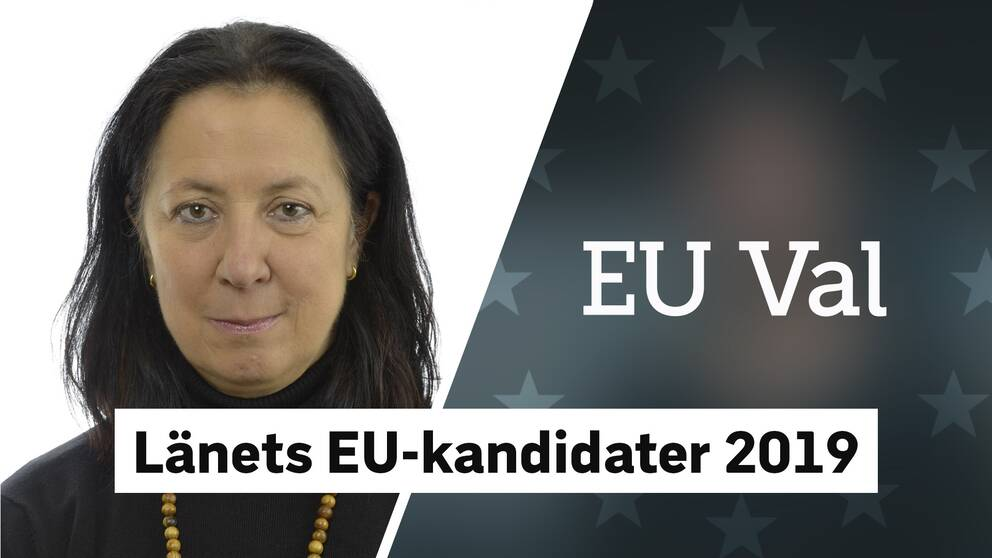 eu val moderaterna