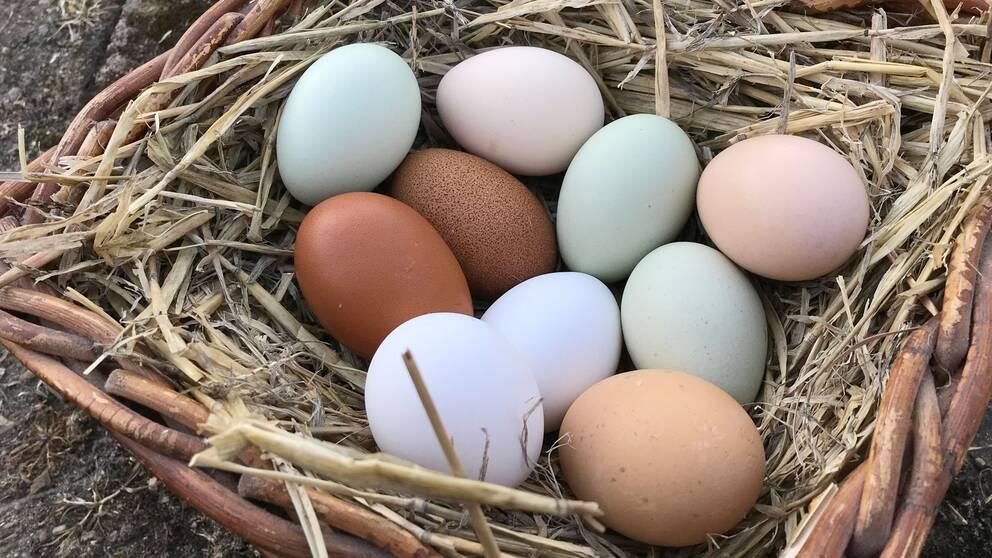 Naturligt olikfärgade ägg ligger i en korg.