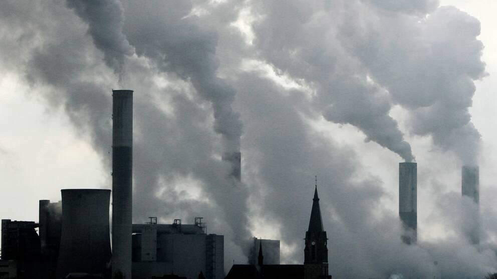 Ett kolkraftverk i Dusseldorf i Tyskland. EU-parlamentarikerna är oense om hur EU ska lösa klimatkrisen.