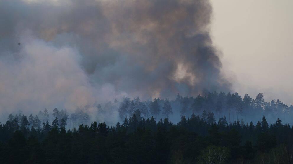 Brandrök stiger mot himlen från skogen i Tjällmo, Motala kommun.