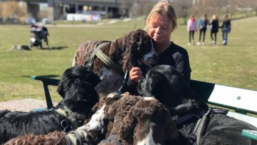 Pernilla Bergqvist matar hundarna med hundgodis