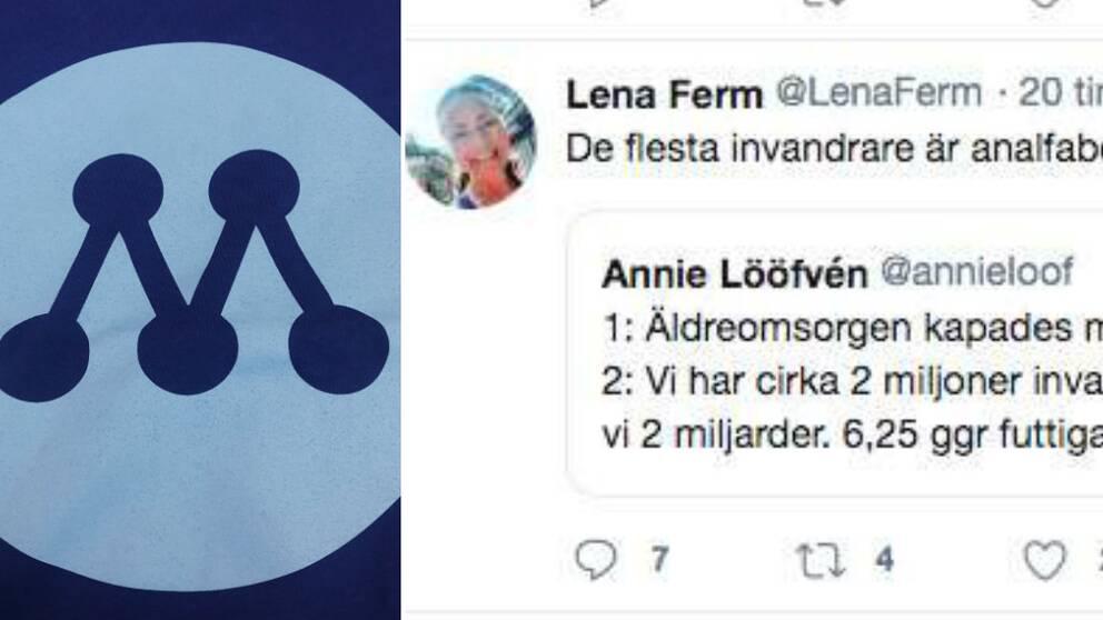 Moderaten Lena Ferm twittrade att alla invandrare är analfabeter