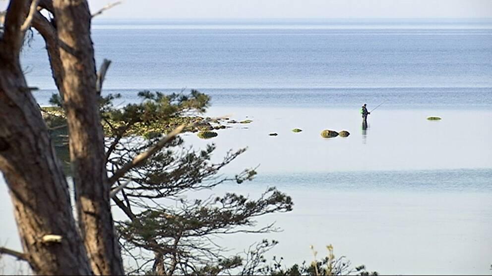En fiskare med spö står i havet.