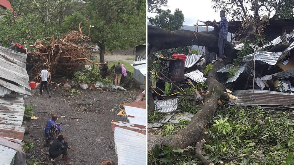 Flera hus har förstörts av fallande träd i Moroni, Comoros, efter att ovädret Kenneth drog in över Moçambique.