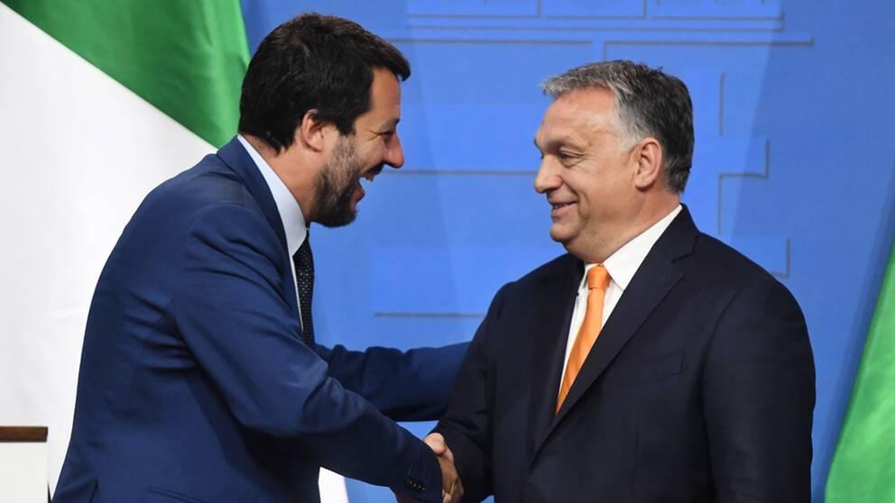 Italiens vice premiärminister Matteo Salvini har kommit överens med Ungerns premiärminister Viktor Orbán om att samarbeta mer i migrationsfrågan.