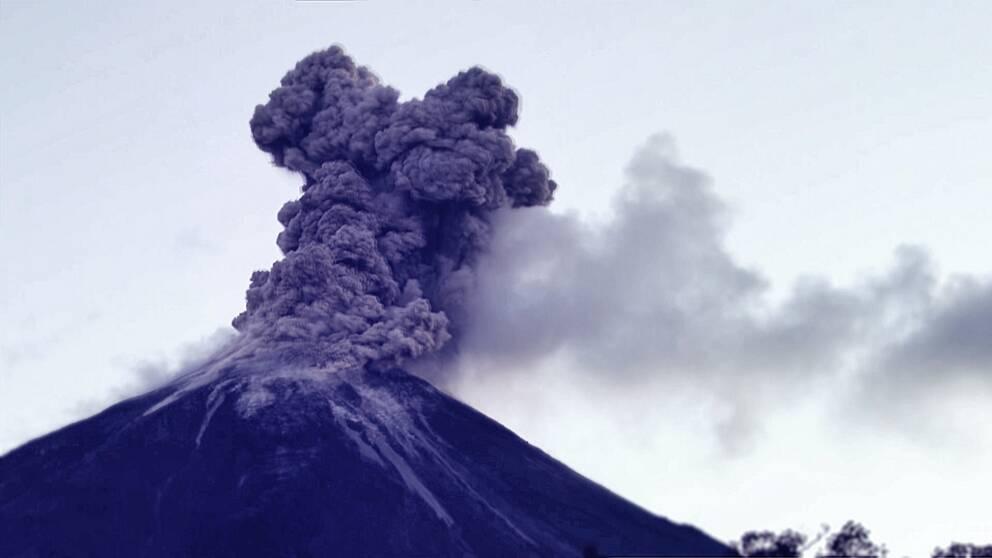 Vulkanen Kilaueas utbrott för ett år sedan.