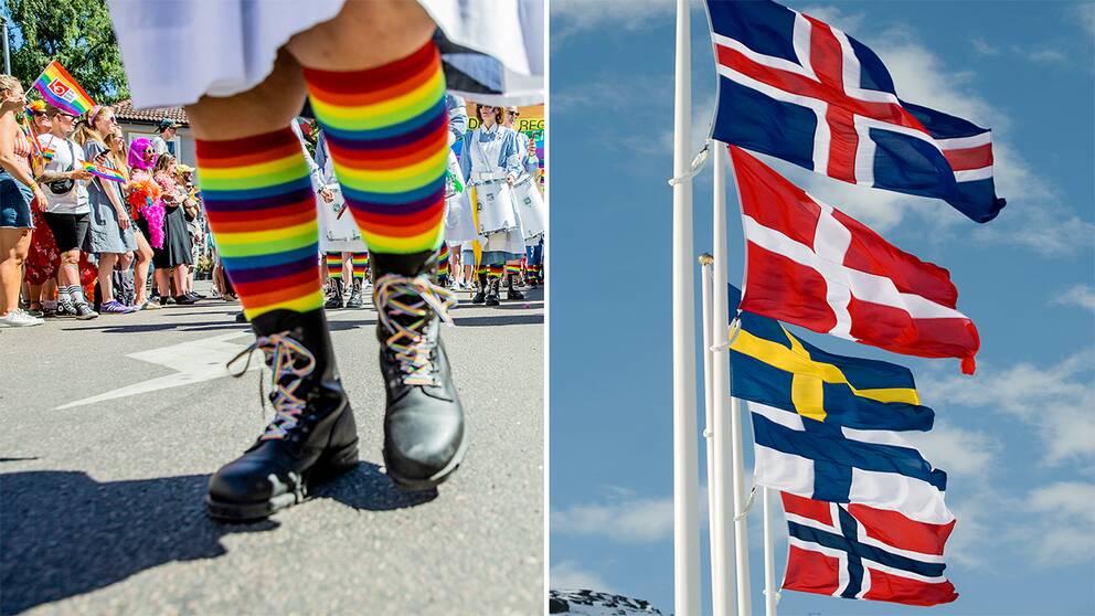 Av de nordiska länderna är det bara Island som hamnar under Sverige på ILGAS lista över olika länders lagstiftning för att skydda hbtqi-personers rättigheter, med 47 % jämfört med Sveriges 62 %.