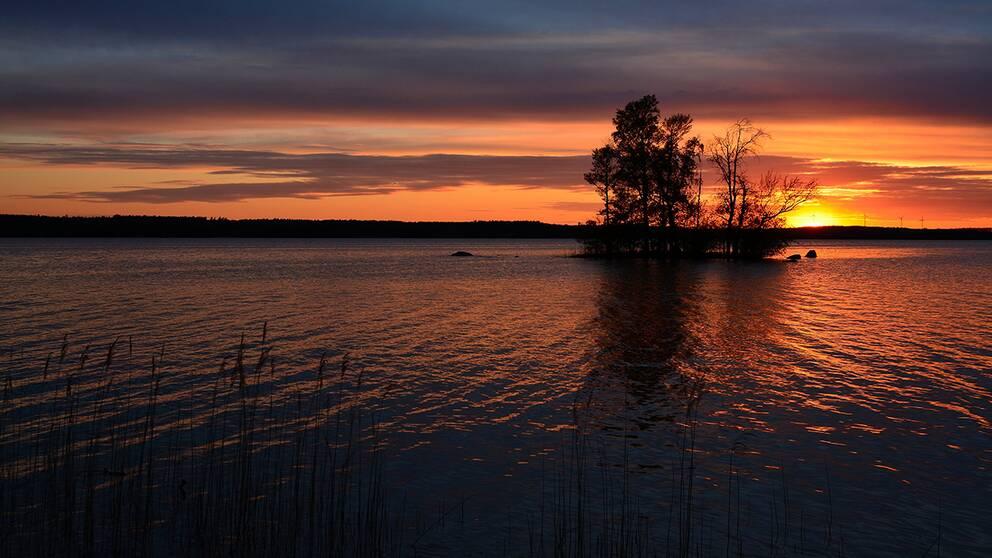 2019-05-14, från parken vid Bäckaskogs Slott.Sjön heter Oppmannasjön.