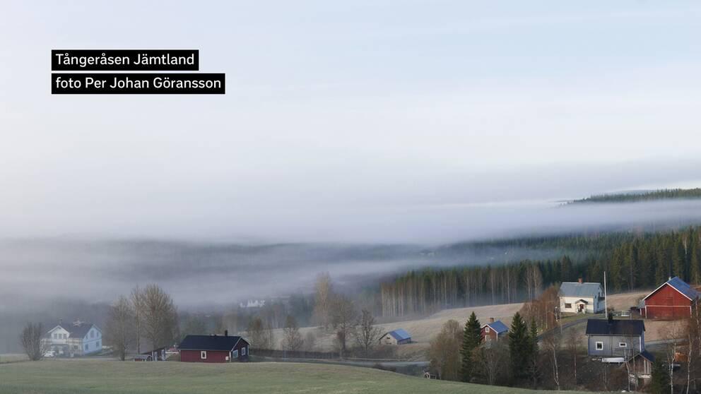I natt minusgrader. Nu på morgonen lättar dimman i dalgången söder om Tångeråsen, Offerdal Jämtland.
