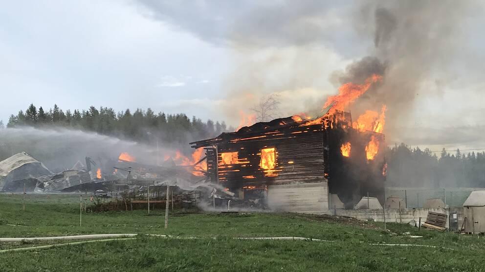 Ett övertänt hus där eldslågor slickar sig ut genom tak och fönster.