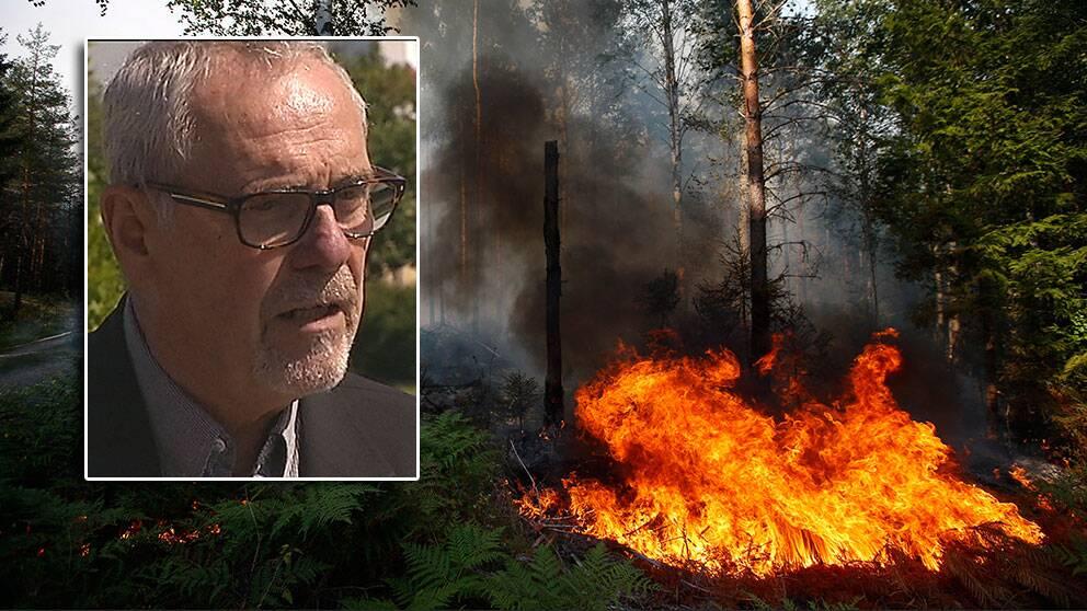 Bengt Holgersson- ledde regeringens klimat- och sårbarhetsutredning