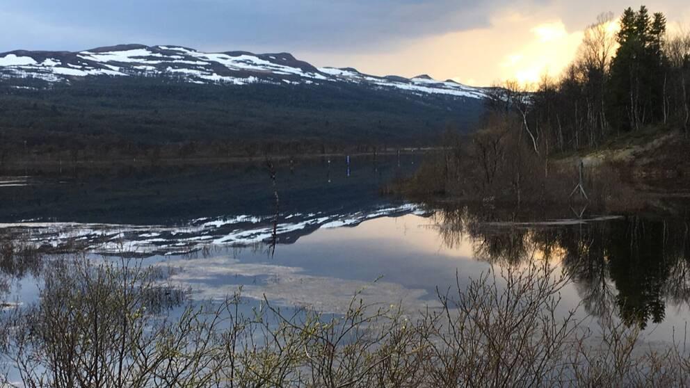 vy över fjällsjö med skog och ett fjäll med snöfläckar