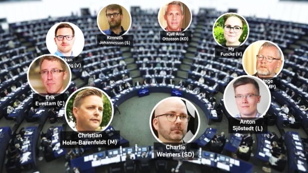 Känner du igen våra värmländska EU-kandidater?