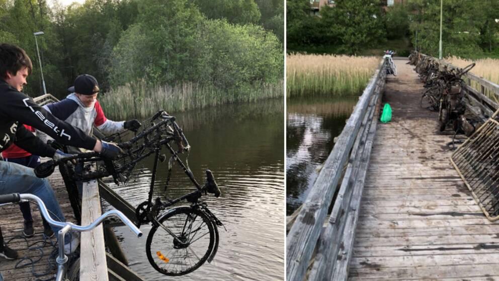 Moderne Tröttnade på att fastna med draget – drog upp 49 cyklar ur Svartån IQ-98