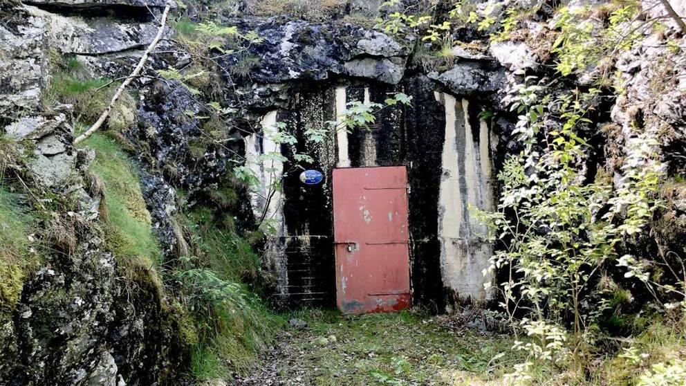 Vattenbassängen där man funnit flera tarmbakterier.