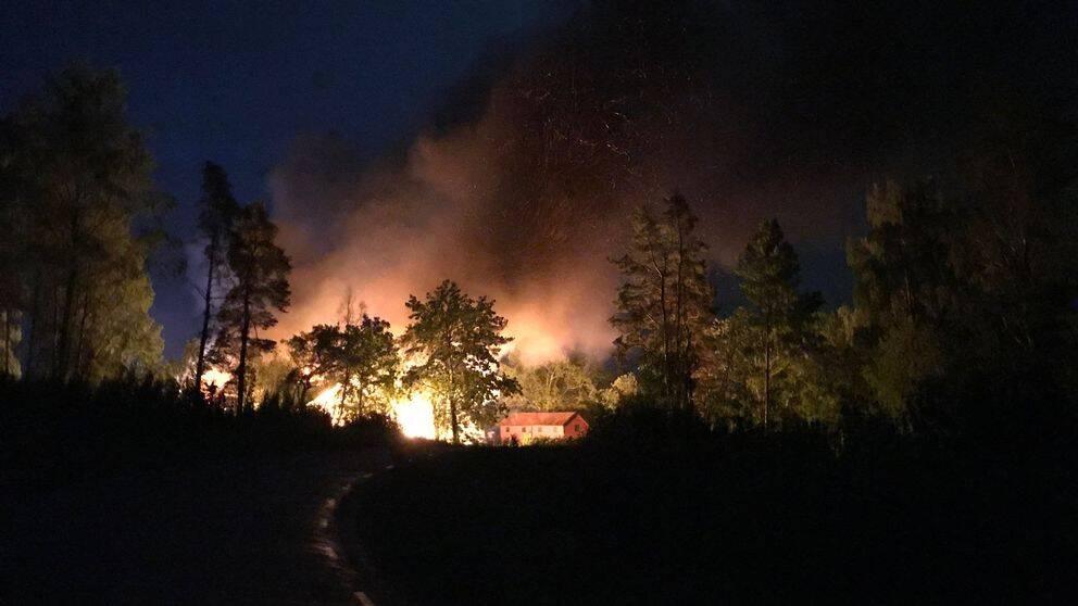 En stor brand ute i en mörk skog.
