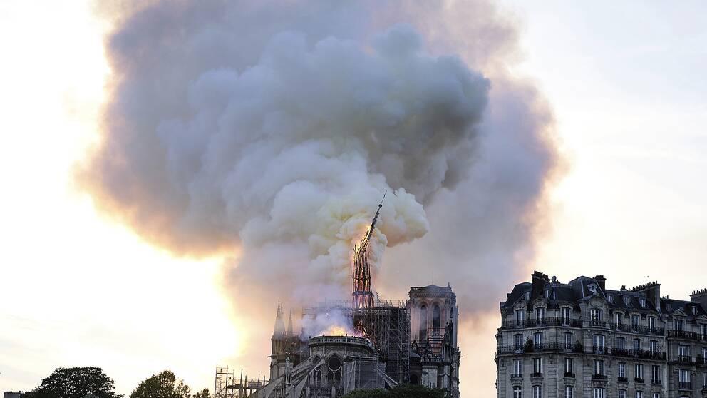Brinnande katedralen Notre-Dame i Paris med ett stort rökmoln ovanför.