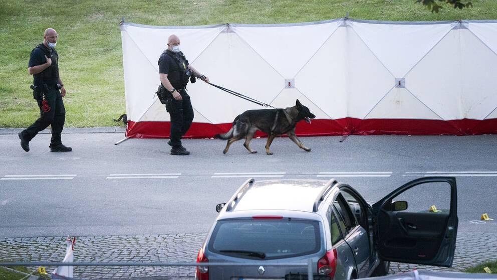 Polis och kriminaltekniker på plats efter att två människor skjutits ihjäl i en svenskregistrerad bil i Köpenhamnsförorten Herlev på tisdagskvällen – på torsdage meddelade polisen att de båda männen är identifierade
