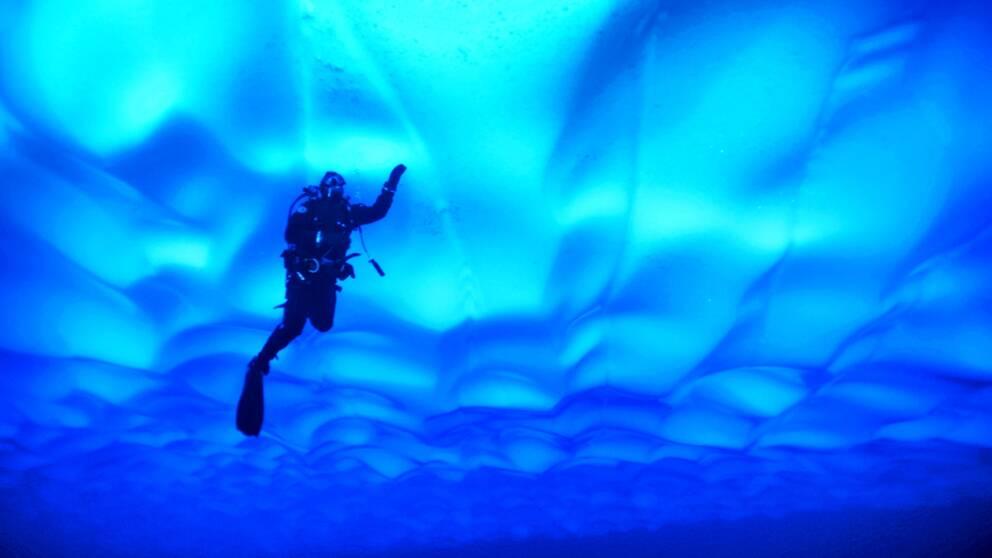 Sjön Untersee I Antarktis ligger under tre och en halv meter is.