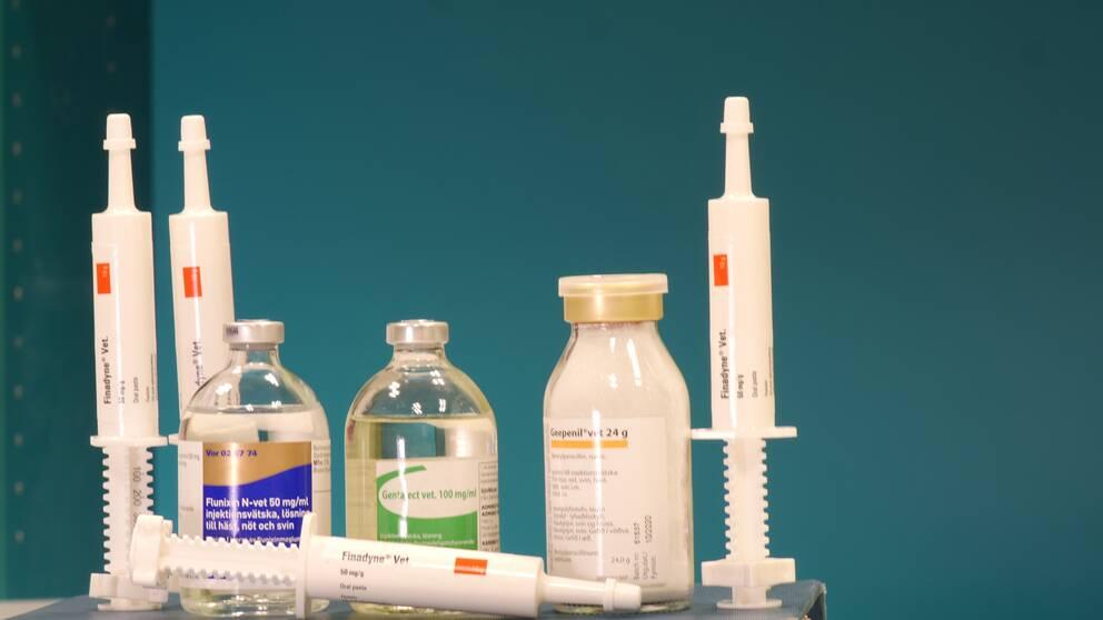 Antibiotikaanvändningen till djur skiljer sig stort åt i Europa.