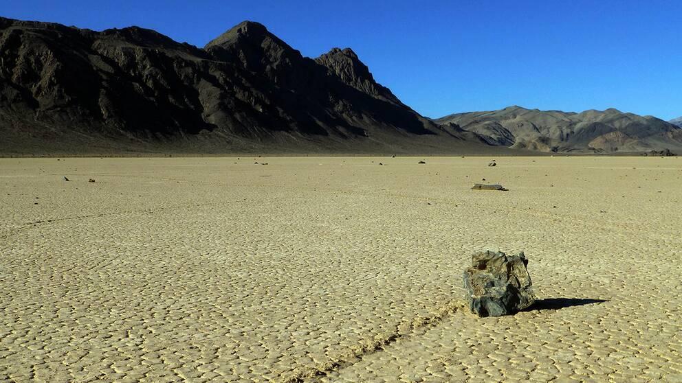I en torr öken i USA ger sig stora stenar ut på oförklarliga promenader. Nu är mysteriet löst.
