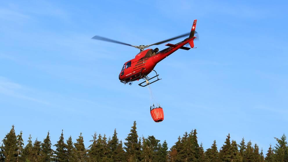 Räddningstjänstens brandhelikoptrar deltog i släckningsinsatsen under onsdagen.