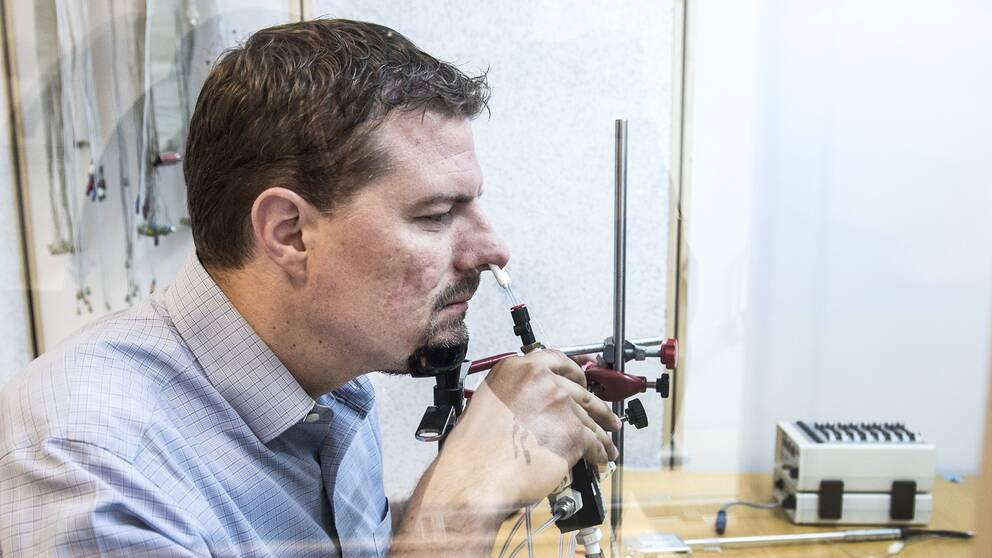 Johan Lundström, docent i neuropsykologi vid Karolinska institutet i Stockholm.