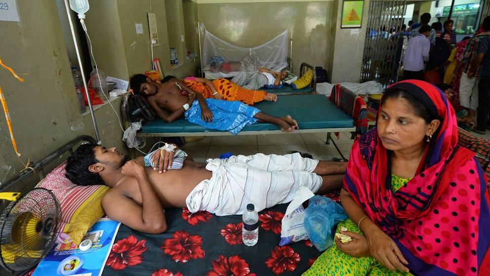 Invånarna i Bangladesh som får behandling mot denguefeber vid Shaheed Suhrawardy universitetssjukhus.