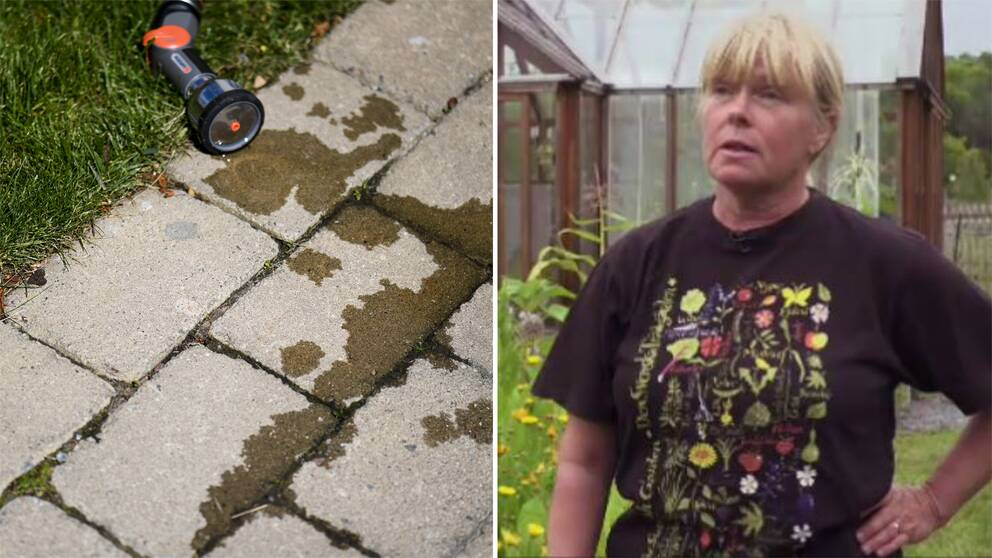 En vattenspruta ligger på stenplattor, Trädgårdsrådgivaren Lise-Lotte Björkman