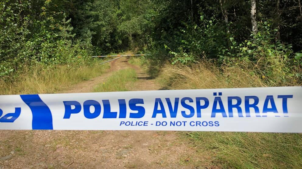 Misstänkt för Markarkarydsmord utlämnas till Sverige