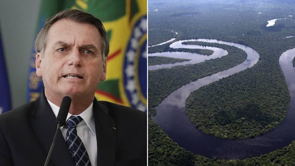 Bolsonaro och Amazonas