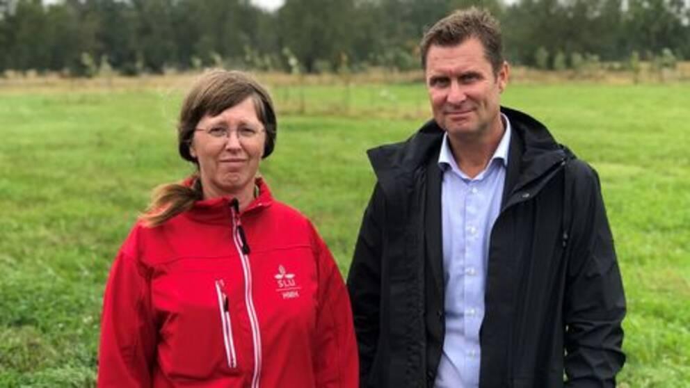 Anna Hessle, forskare SLU, och Mats Wiktorsson på SLU Holding framför grönt fält