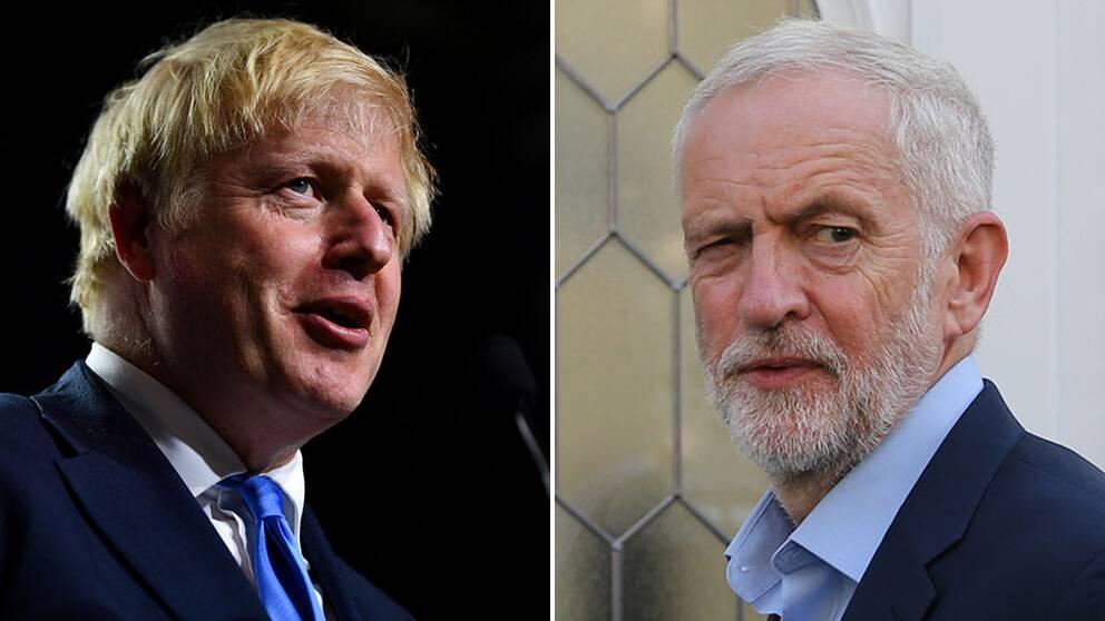 Johnson ber drottningen hålla parlamentet stängt