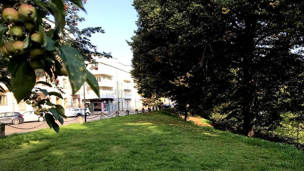 Stadsgata till vänster och lummig gräslänt till höger sluttande mot kanalen.