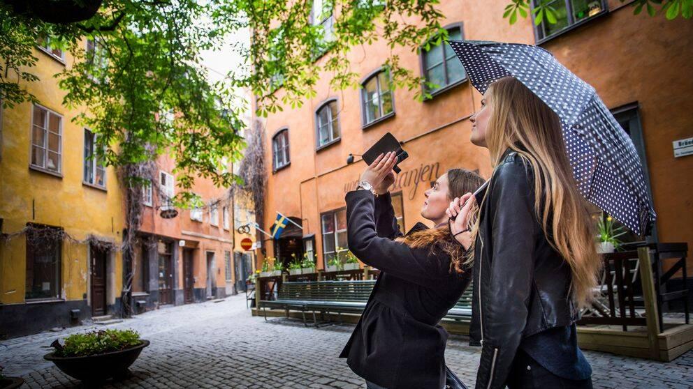 Två unga turister fotograferar en stor kastanj på Brända tomten i Gamla stan i Stockholm. Arkivbild.