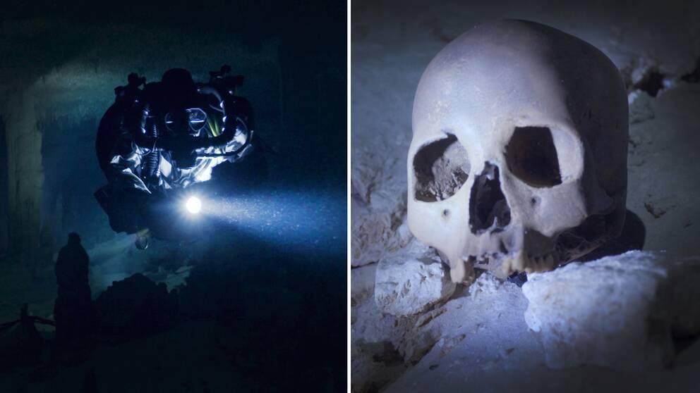 Två bilder varav den ena är på en dykare i en undervattensgrotta, den andra på dödskallen dykarna hittade i grottan.